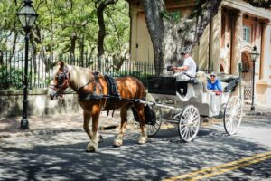 Palmetto Carriage Works Porters Lodge-CofC Alumni Discount Directory